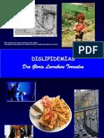 Dislipidemias 2013, Dra. Larrabiau