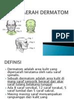 DAERAH DERMATOM