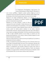 INVESTIGACIÓN DE -PLN-