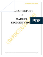 Market Segment at i on Project Report