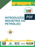 Introducao a Industria Do Petroleo