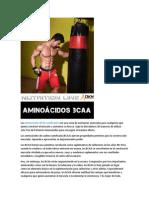 Aminoácidos BCAA ramificados