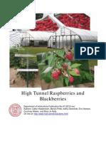 High Tunnel Raspberries and Blackberries 2012