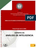 ICFS_ExpertoAnalisisInteligencia.2013-2014
