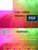 Cross Culture Dynamics