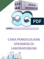 Cara Pengelolaan Spesimen Di Lab