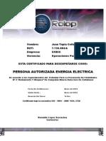 Diploma Electrico