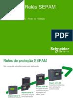 01_SEPAM_Gama de Relés