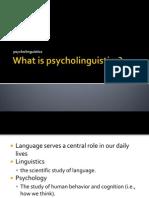 2.What is Psycholinguistics