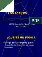 CLASE 3 Fosiles