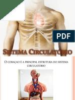 Sistema Circulatório.pptx
