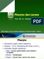 -D- Pharynx Dan Larynx