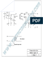 Picana  Super 12.pdf