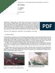 Risks of Tailings Dams Failure