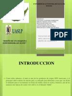 PROYECTO  DISEÑO DE MAQUINAS II