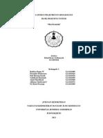 Lap.farmakologi Kel 1 Gelombang C(2011)