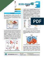 MATERIAL 20140214132147004BioTotal Proteinas20e20Enzimas202014