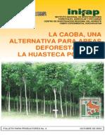 La Caoba, Una Alternativa Para Las Areas Deforestadas de La Huasteca Potosina_INIFAP 2003