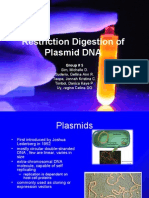 Restriction Digestion of Plasmid DNA