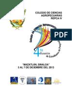 MEMORIA REPCA IVb.pdf