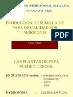 Producción de semilla de papa de calidad por aeroponia