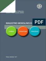 MAGISTRO MOKLSINIS DARBAS - Forma, struktūra, procesas