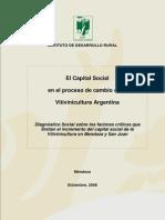 El Capital Social en El Proceso de Cambio Vitivin Arg