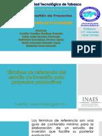 Expo Proyectos.pptx