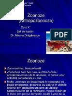 Antropozooneze