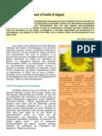 3501638-Bio-futur-algues-carburant-du-futur.pdf
