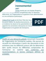 Audit environnemental.pptx