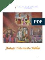 19 - ATM - ANTIGO TESTAMENTO MÉDIO - CD19