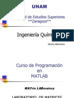 Curso de Programación matlab 2013