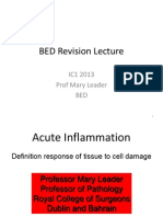 IC1 2013 - BED - BED Revision Lecture for Moodle - UPDATED