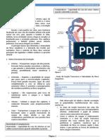 Resumo - Fisiologia Cardiovascular.pdf
