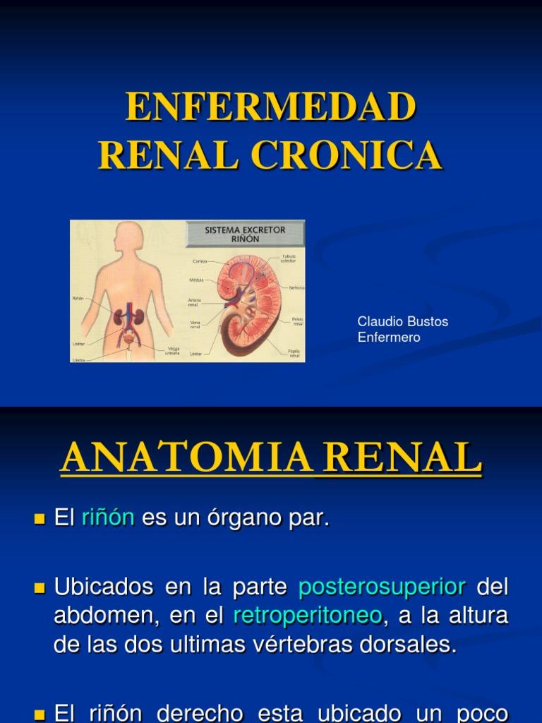 Insuficiencia Renal (1)