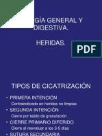 Cirugia General y Digestiva 2011 (1)