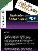 Replicacion de Acidos Nucleicos