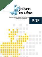 Jalisco en Cifras 2010