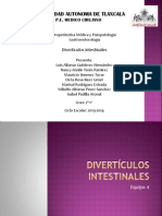 Divertículos intestinales eq 4