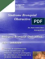 03. sindrome_bronquial_obstructivo_(2013)