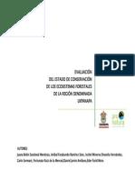 Evaluacion Ecosistemas Forestales Uxpanapa