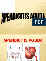 2. Apendicitis Aguda 2014
