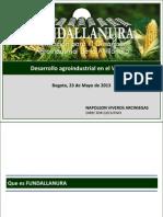 4 Desarrollo Agroindustrial Vichada-NV