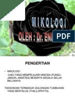 MIKOLOGI.ppt