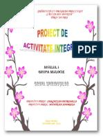 Proiect de o Zi - o Aventura Strumeasca