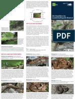 Flyer_Reptilien_Web.pdf