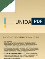 Sociedad de capital e industria