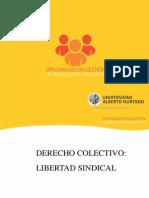 Derecho Colectivo Libertad Sindical 2013