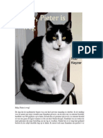 eBook Help Pieter is Weg